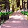 Sursa foto: AccentSandPetals.blogspot.ro